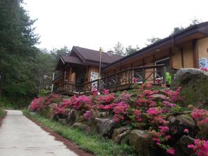 Photo of Guesthouse Aha