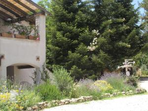 Casa le Monache, Country houses  Montecastrilli - big - 13