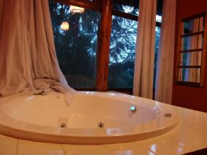 Studio with Spa Bath and Mountain View
