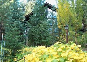 Jean's Cabin By Tahoe Vacation Rental