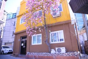 Photo of Gom Guesthouse Dongdaemun