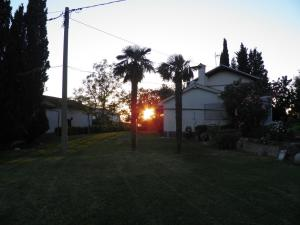 Photo of Apartments Cipresa