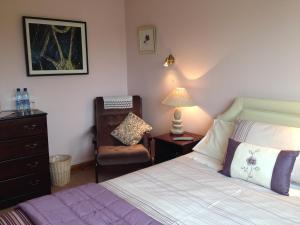 Claremont B&B, Bed and Breakfasts  Galway - big - 6
