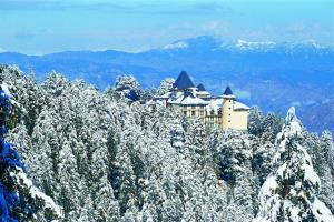 Wildflower Hall Shimla, Отели  Шимла - big - 54