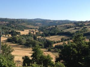 Le Tartarughe B&B, Bed & Breakfasts  Magliano in Toscana - big - 19