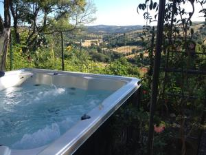 Le Tartarughe B&B, Bed & Breakfasts  Magliano in Toscana - big - 36