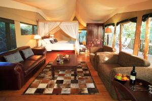 Executive Tent with Private Pool