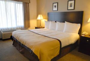 Baymont Inn and Suites, Hotely  Reno - big - 16
