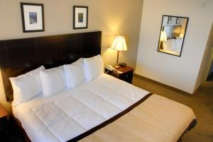 Baymont Inn and Suites, Hotely  Reno - big - 7
