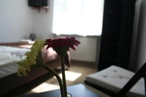 Bed and Breakfast Adax, Cracovia