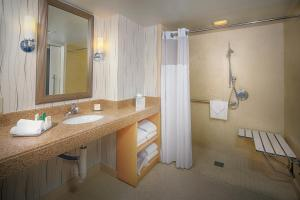 Executive Level King Suite - Accessible with Roll-In Shower