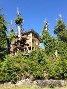 Photo of Ukee Tree House
