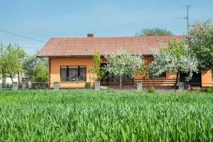 Photo of Holiday Home Lendava