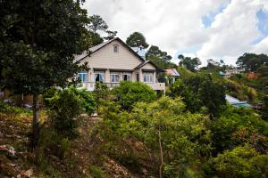 Photo of Jungle View Homestay