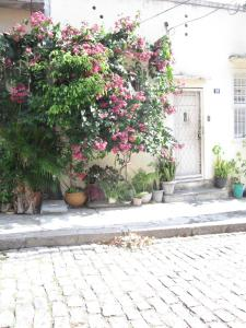 Photo of Home In Rio