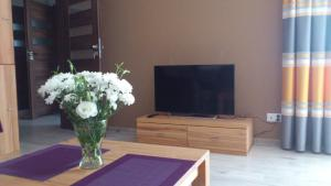 Apartament New Versal