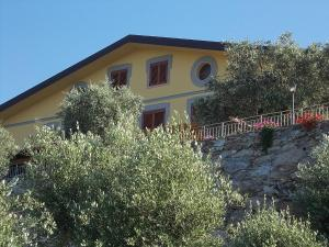 Uliveto Garden, Bed & Breakfast  Bagnara Calabra - big - 32