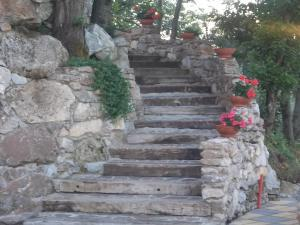 Uliveto Garden, Bed & Breakfast  Bagnara Calabra - big - 37