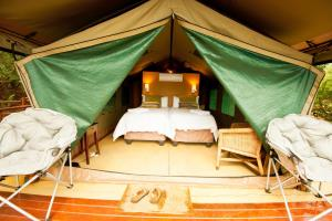 Luxury Tent with Splash Pool