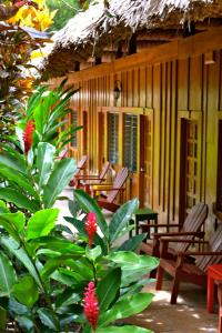 Photo of Jungle Lodge Tikal Hostal