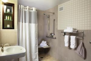 Double Room with Roll in Shower - Hearing Accessible