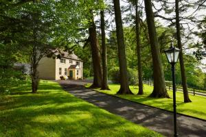 Dromard House Bed And Breakfast