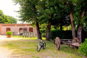 Casa Di Campagna In Toscana, Country houses  Sovicille - big - 150