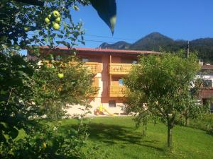 Photo of Apartments Masera