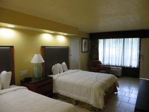 Pet Friendly Room- Two Queen Beds