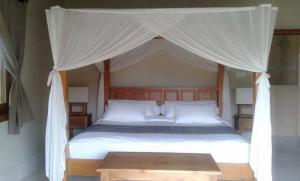 Three Monkeys Villas, Holiday parks  Uluwatu - big - 9