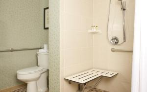 Double Suite with Roll in Shower - Disability Access