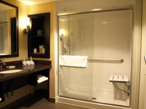 King Room with Roll in Shower - Hearing Accessible/Non-Smoking