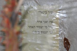 Our Place In Abirim