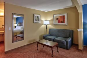 Executive Suite with One King Bed