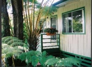 Photo of Hapu'u Fern Cottage