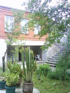 Photo of Guesthouse Gegi