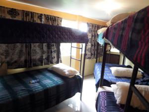 Bed in 8-Bed Mixed Dormitory Room