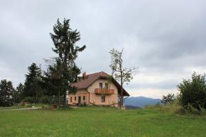 Photo of Holiday Home Razglednik