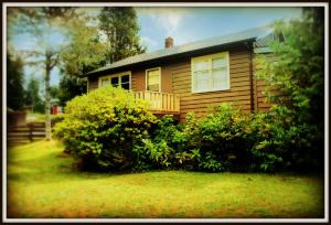 Photo of Port Renfrew Country Cottage