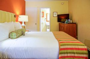 Poolside Queen Room - Disability Access