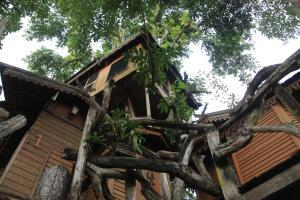 Pai Treehouse, Resorts  Pai - big - 32