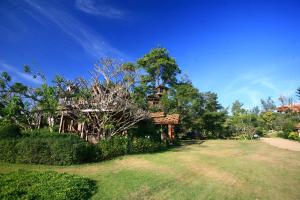 Pai Treehouse, Resorts  Pai - big - 1