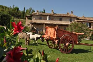Prenota Farm stay Il Carro del Colle