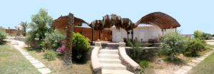 Mermaid Resort v Nuweiba – Pensionhotel - Penzioni