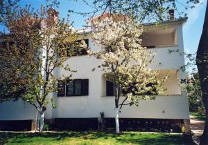 Photo of Apartment Porec 1