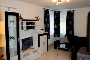 Haus Veni, Apartmanok  Bad Grund - big - 12