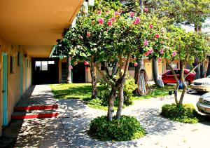 Motel Presidente, Hotels  Ensenada - big - 13
