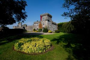 Photo of Fanningstown Castle