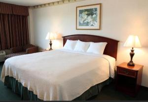 The Riverview Inn Clarksville, Hotels  Clarksville - big - 8