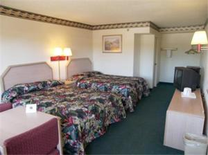 Room with 2 Full Beds